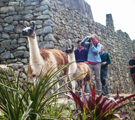 Luxury Enchanting Highlights of Peru and Machu Picchu
